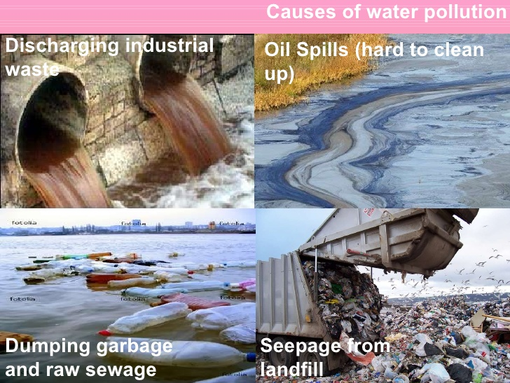 Water Pollution Causes, Effects & Solutions | Water Purifiers Experts