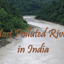 Top 3 Most Polluted Rivers in India
