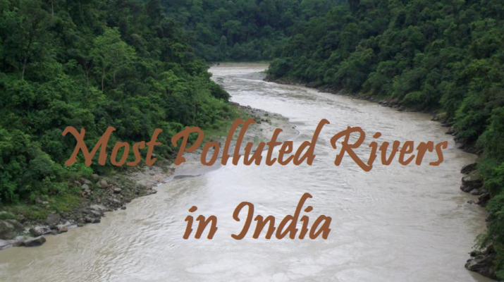 Most polluted rivers in India