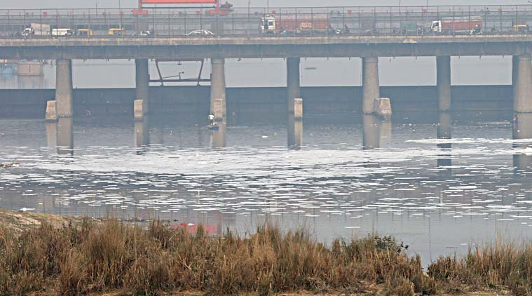 Yamuna river pollution