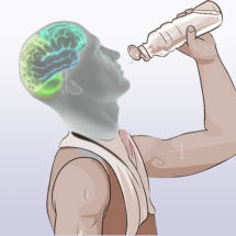 Know Why Your Brain Needs Water to Overcome depression