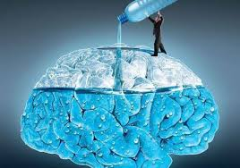Drinking water and brain